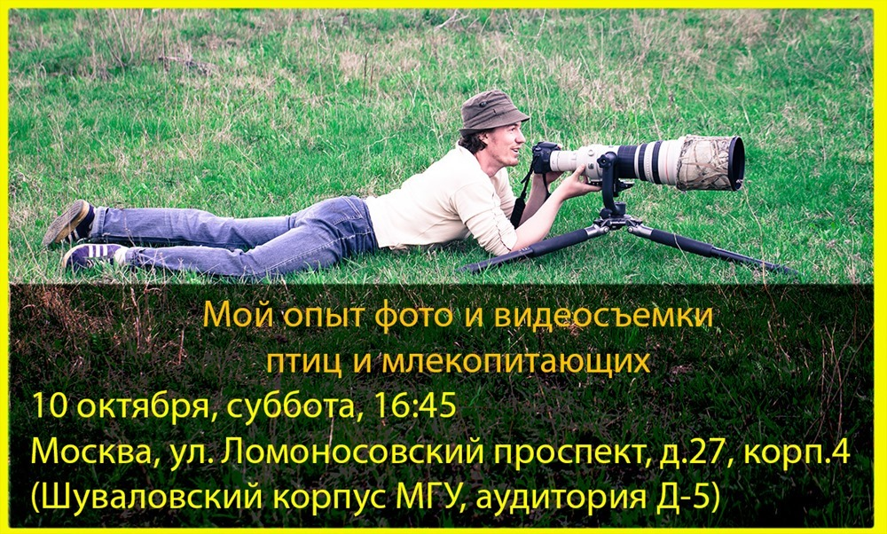 Wildlife_Photographer2015