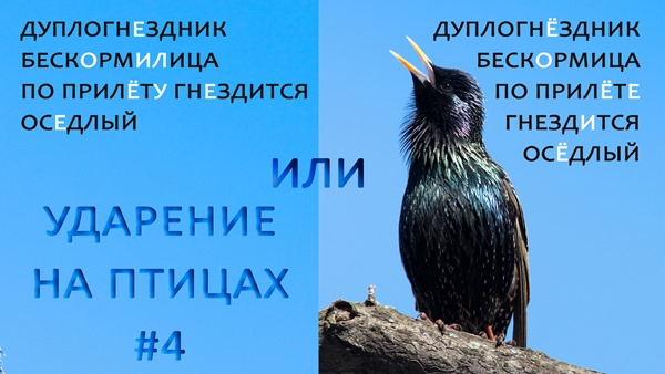 2020-01-25-Оседлый-и-др-Ударение-4